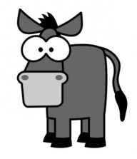 donkey5k
